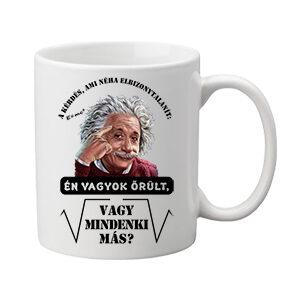 Mindenki őrült Einstein – Bögre