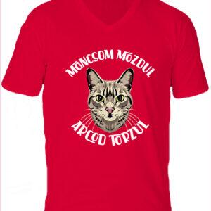 Macska mancs-Férfi V nyakú póló