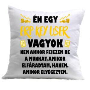 ERP key user – Párna