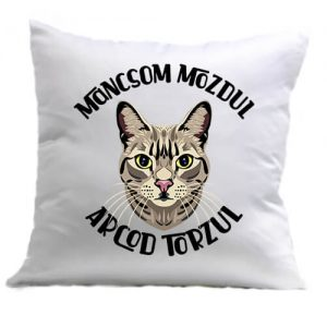 Macska mancs – Párna